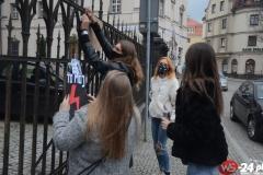 Protest-Świdnica-12-1