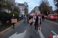 Protest-Świdnica-19-1