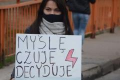 Protest-Świebodzice-18