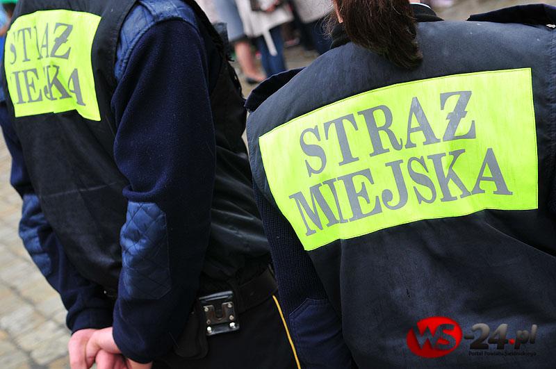 Interwencje straży miejskiej