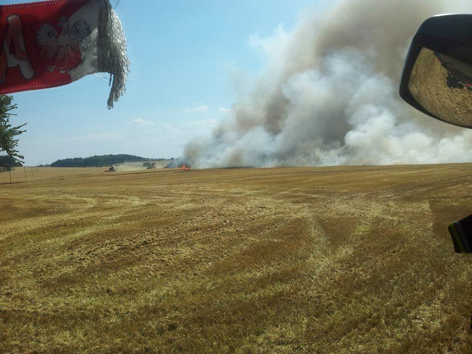 Ogromny pożar zboża [FOTO]