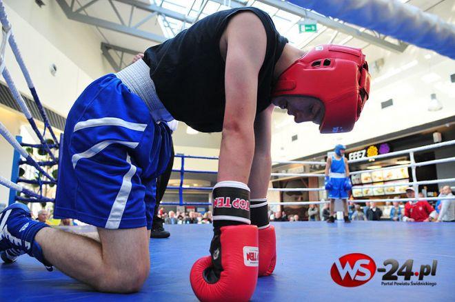 Młodzi bokserzy opanują Galerię Świdnicką