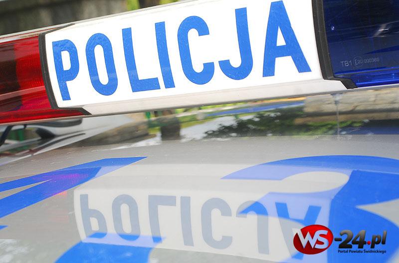 Policjanci sprawdzają autokary