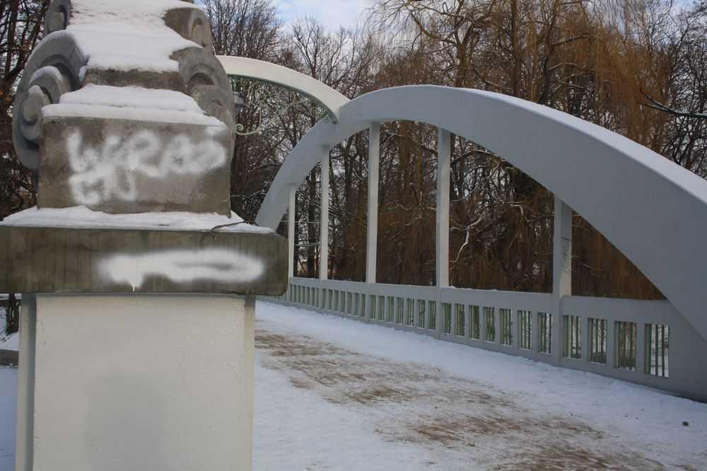 park centralny (3)