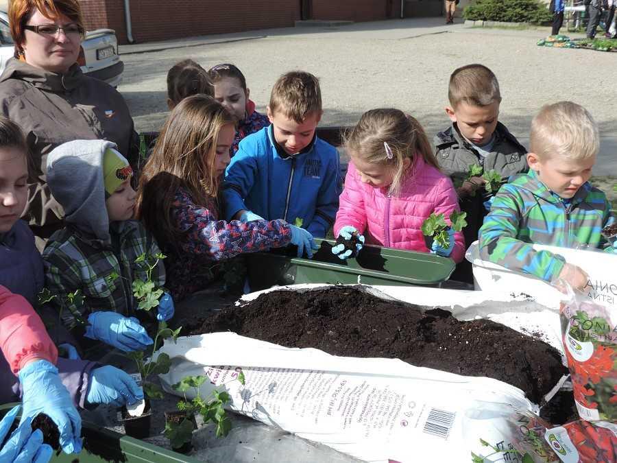 Dzieciaki sadzeniaki