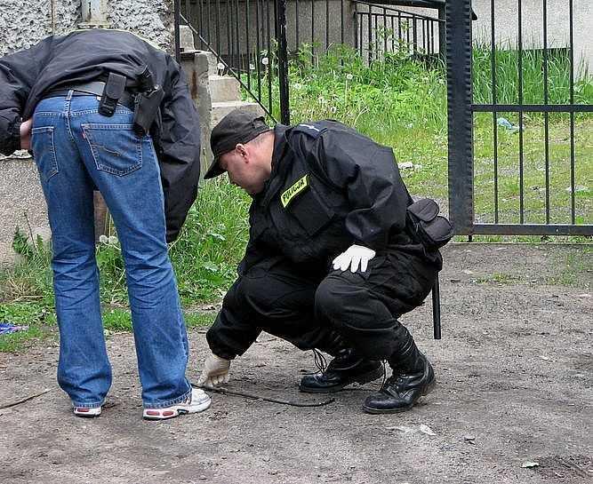 policja (4)