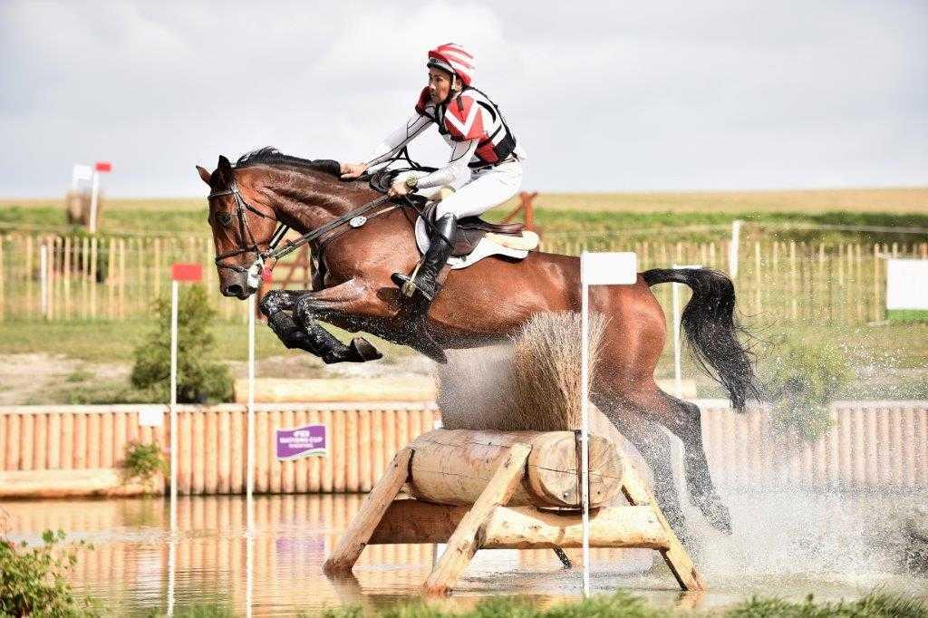 konie zawody