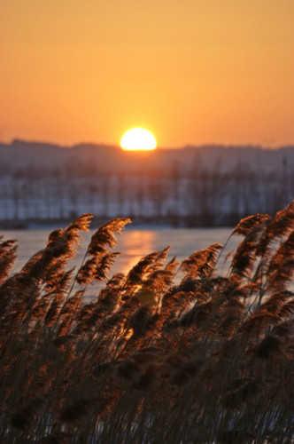 Angelika Pieńkos - Malowniczy zachód słońca