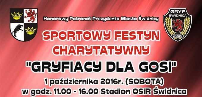 plakat festyn1