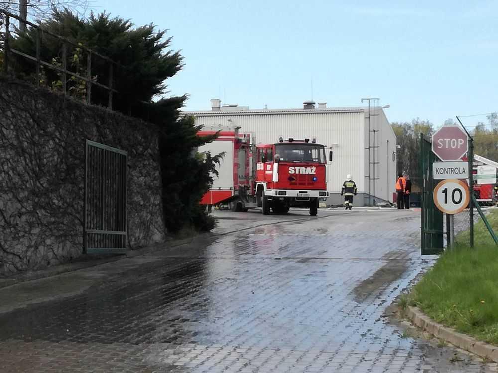 Pożar hali w Żarowie
