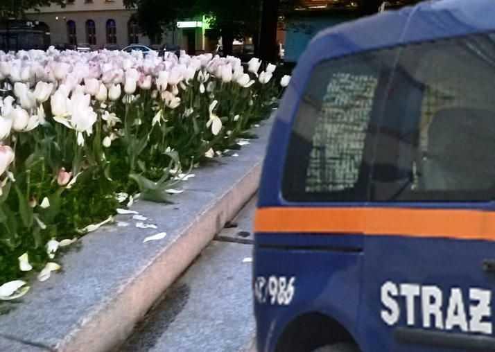 Kwiatek się nie obroni
