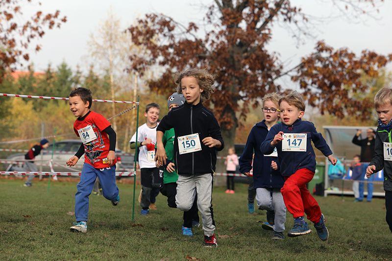 Dzieci ze Świdnicy i Trutnova razem na sportowo
