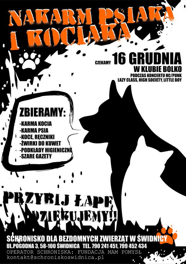 Hard core i punk z Warszawy, Drezna i Śląska w Świdnicy