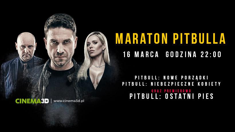 Wygraj bilety na Maraton Pitbulla! (KONKURS)