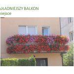 Ukwiecone balkony i posesje (WYNIKI)