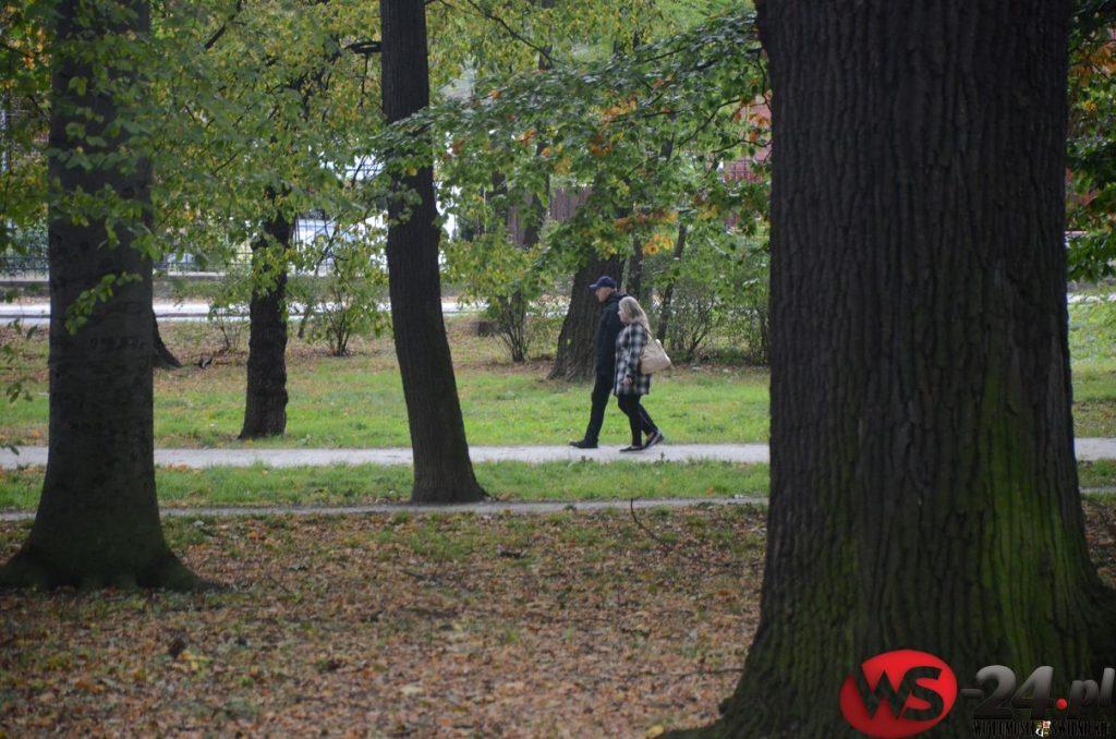 """""""Miasta powinny tonąć w zieleni"""""""
