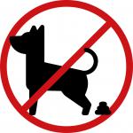 Twój pies – Twój obowiązek